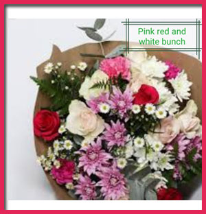 pink-red-&amp-white-bunch